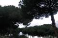 naples_pompei_34