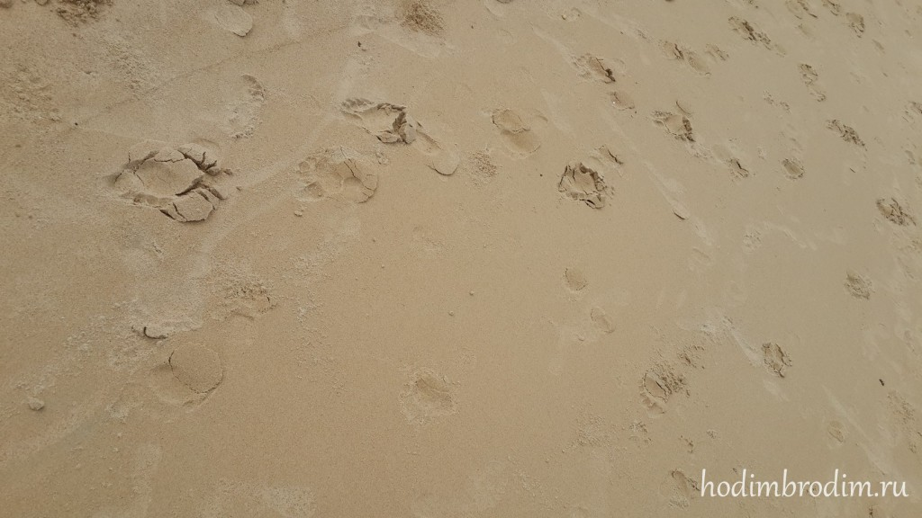 karon_beach_11