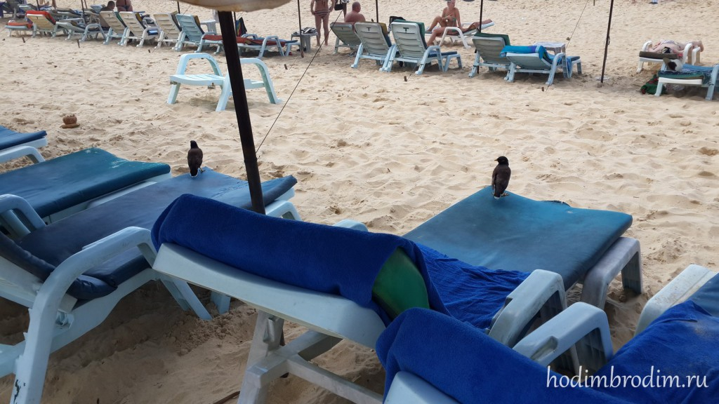 karon_beach_44