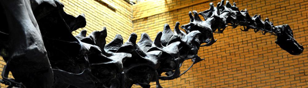 paliontologichesky muzey