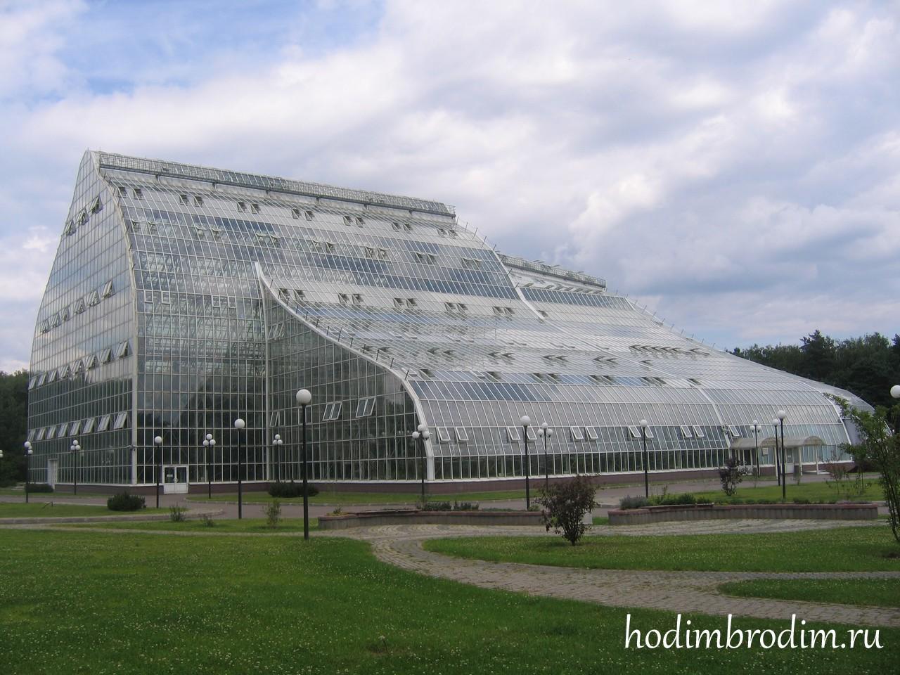 Ботанический сад им. Цицина036